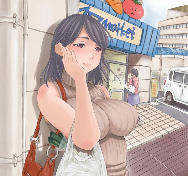 【初級者向け】美しくて綺麗な熟女の二次エロ画像【32】