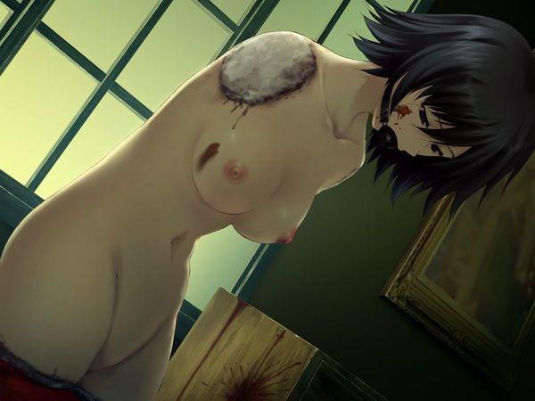 【達磨】完全に四肢切断されてしまった女子達の二次グロ・リョナ画像【40】