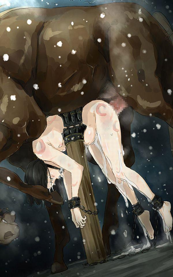 【二次】お馬さんが大好きな女子達の獣姦画像【25】