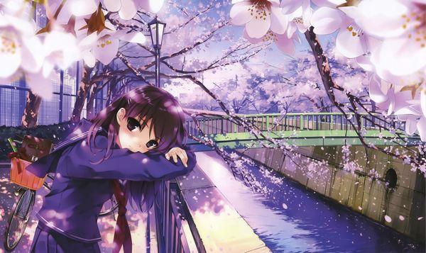 【もうすぐ春ですね】桜と美少女な二次画像【8】