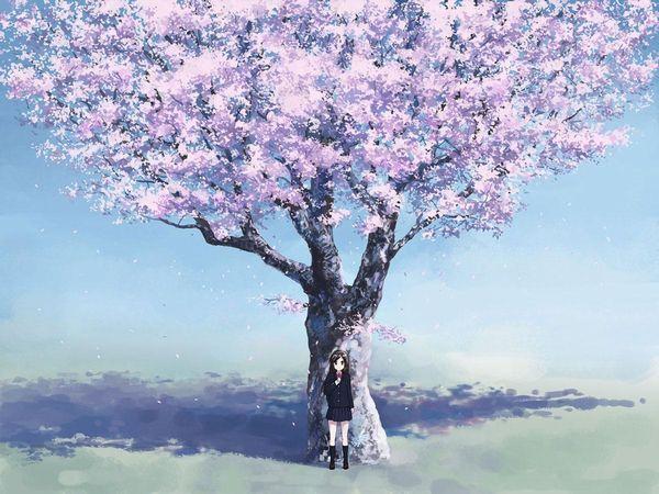 【もうすぐ春ですね】桜と美少女な二次画像【17】