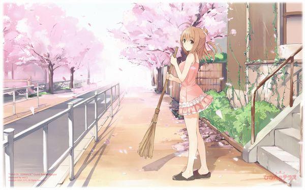 【もうすぐ春ですね】桜と美少女な二次画像【25】