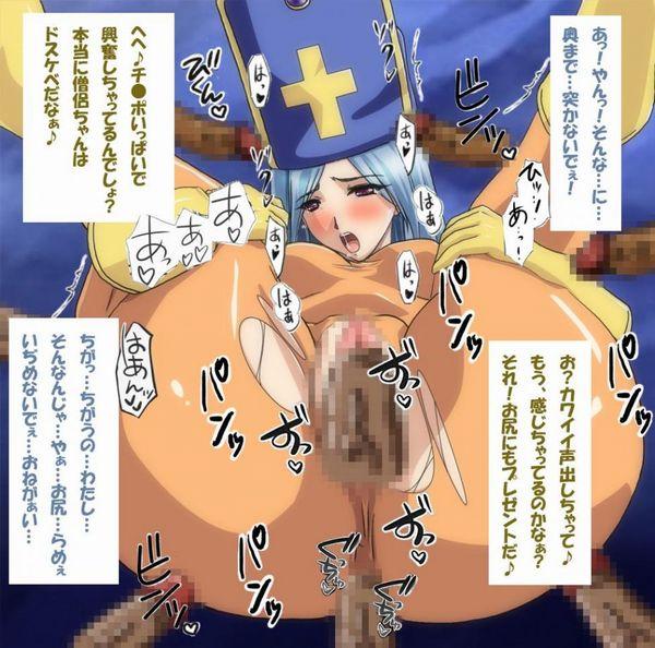 【ドラゴンクエスト】貴重な回復役、女僧侶のエロ画像 【15】
