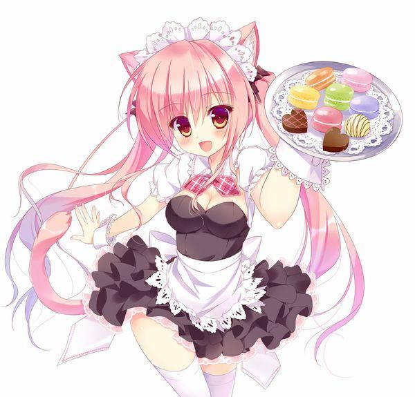 2016/04/21/dピンク髪にツインテールと言うテンプレ女子の二次エロ画像 【11】