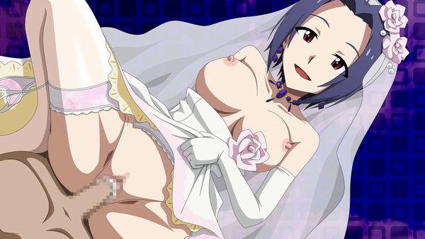 【初夜まで待てない】ウェディングドレスでセックスしてる二次エロ画像 【18】