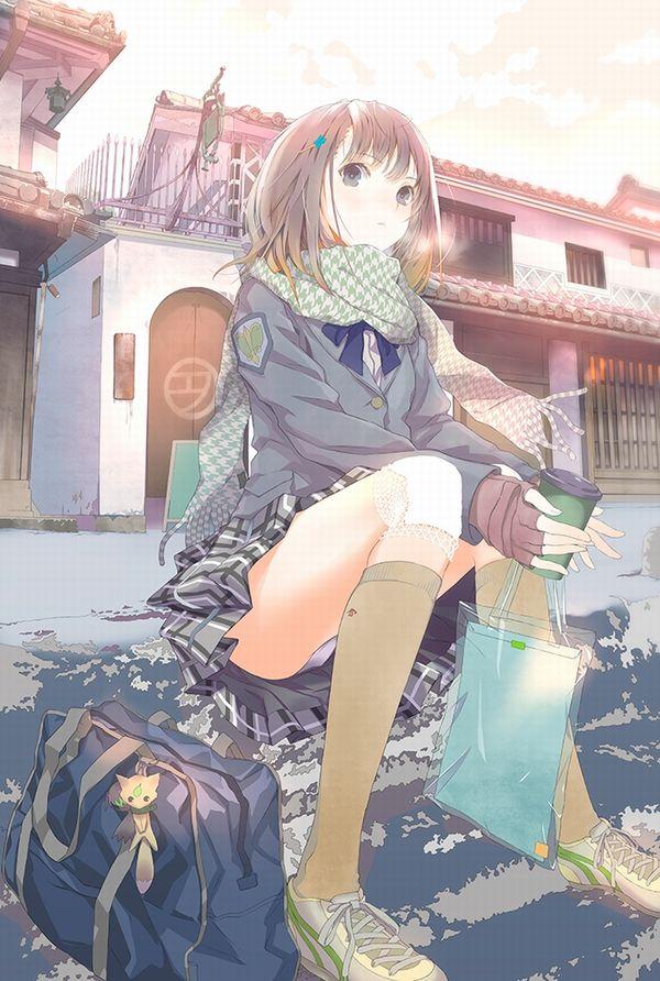 【二次】リアルでも遭遇したい女子高生のパンチラ画像 【6】