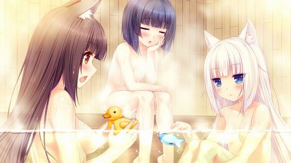 【定番】あのアヒルのおもちゃを浮かべて入浴する女子達のお風呂二次エロ画像【14】