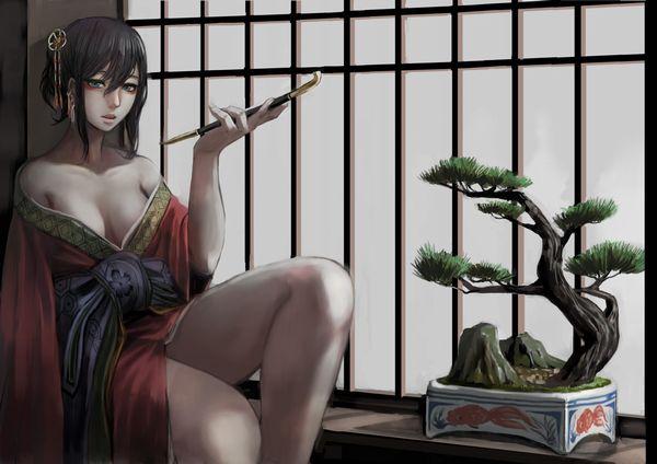 【着物・和服】江戸時代の人ってこんな感じでセックスしてたのかなぁ?って二次エロ画像 【19】