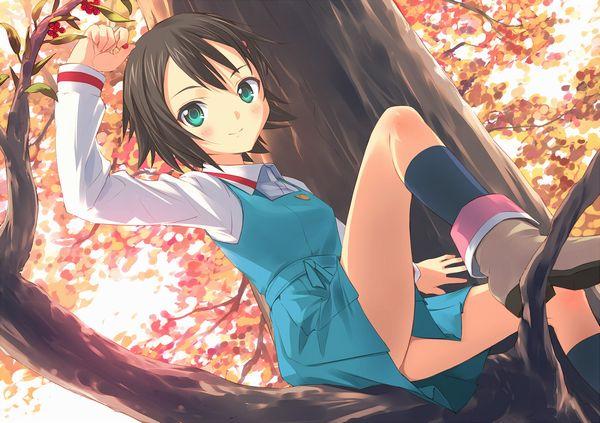 【紅葉】秋っぽい風景と美少女達の二次画像 【1】