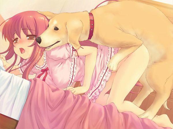【今日のわんこ】「犬って本当に可愛いなあ」とほっこりする二次獣姦画像 【2】