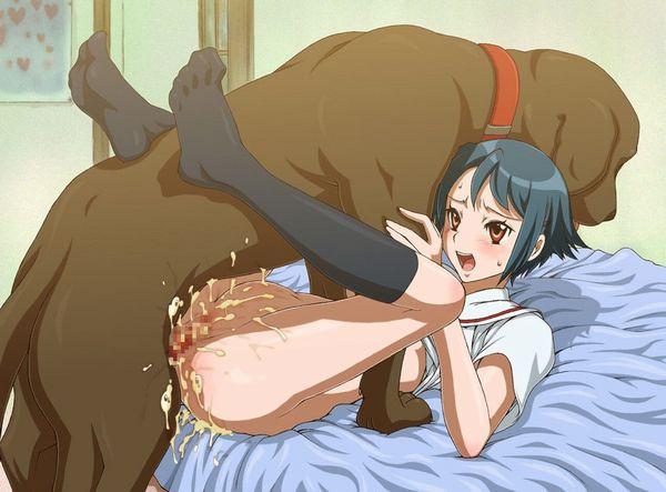 【今日のわんこ】「犬って本当に可愛いなあ」とほっこりする二次獣姦画像 【24】