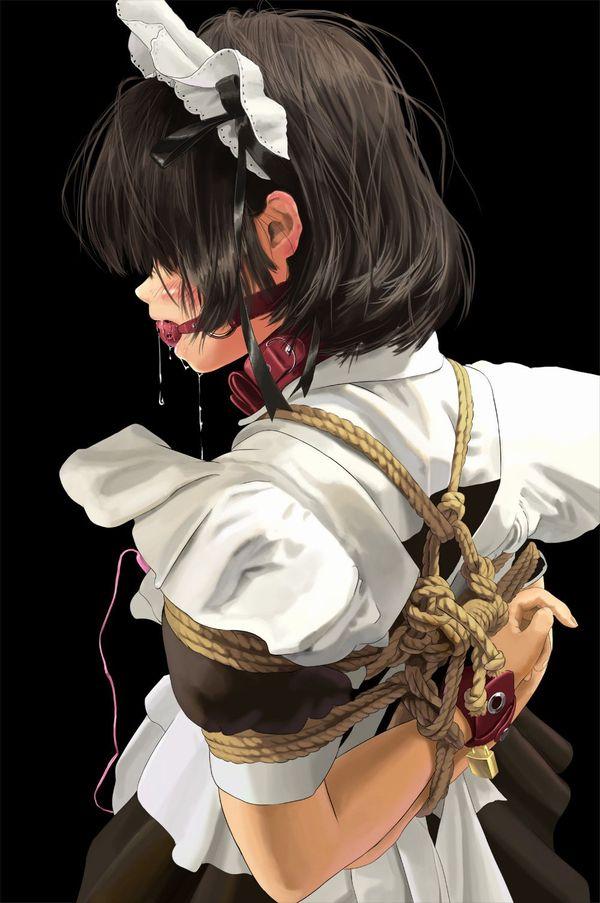 【着衣緊縛】服を着たまま縛られてる女子達の二次エロ画像【10】