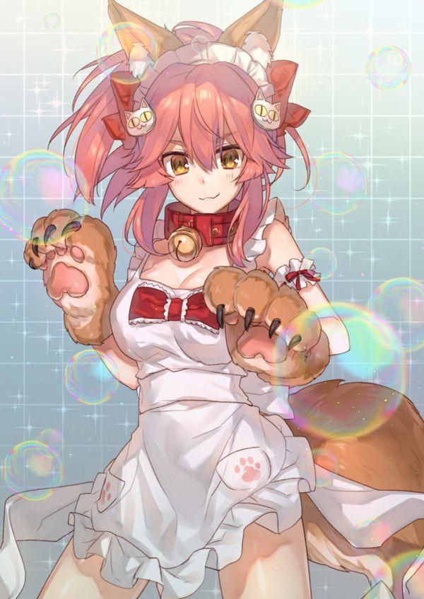 【Fate/Grand Order】タマモキャットのエロ画像【21】