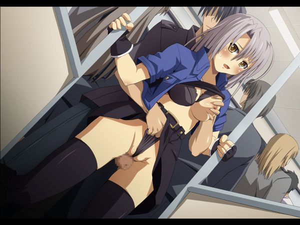 【痴漢では無い】電車の中でプレイしてるカップル達の二次エロ画像【19】