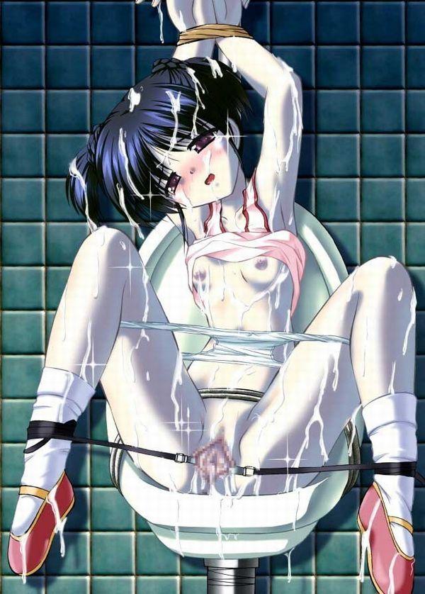 【胸が痛む】レイプされて無残な姿のまま放置されてる二次エロ画像 【25】