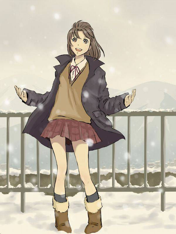 【雪・・強くなってきたな・・】雪の日でも真面目に学校に通う女子高生の二次画像 【11】