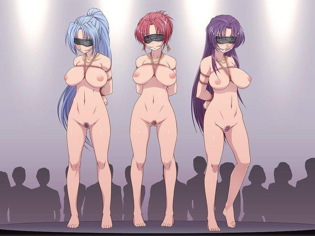 【性的イジメ】みんなの前で晒し者になってる二次エロ画像【29】