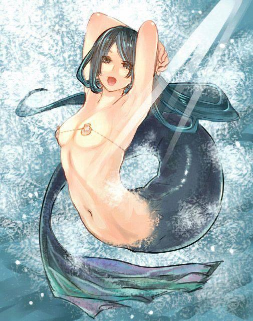 【どこに入れるの?】半漁人やら人魚やらの人外モンスター娘の二次エロ画像【21】