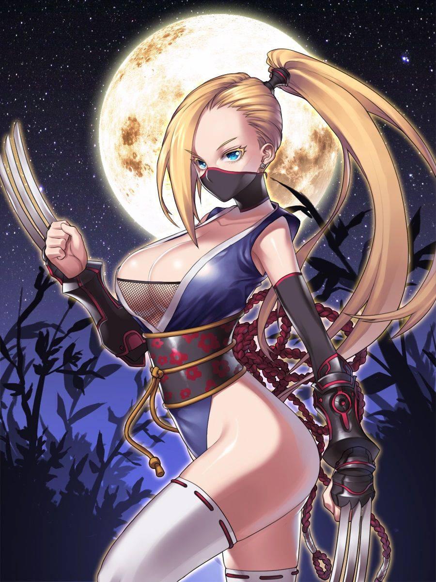【くのいち】色仕掛けが上手そうな女忍者達の二次エロ画像【40】