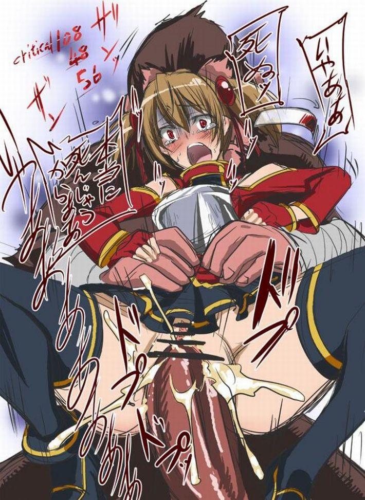 【SAO】シリカ・綾野珪子(あやのけいこ)のエロ画像【ソードアート・オンライン】【11】