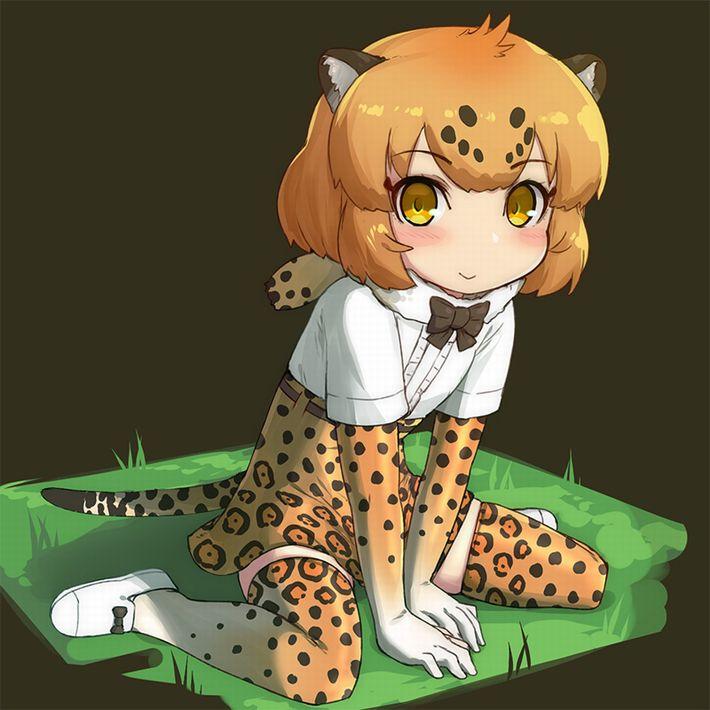 【けものフレンズ】ジャガー(Jaguar)のエロ画像【けもフレ】【23】