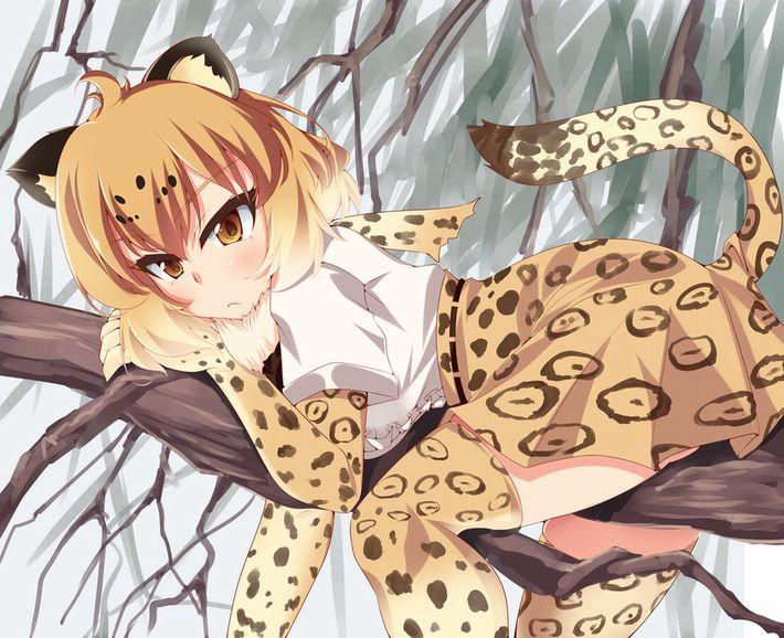 【けものフレンズ】ジャガー(Jaguar)のエロ画像【けもフレ】【37】
