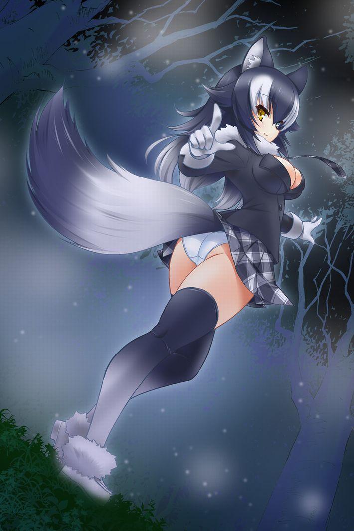 【けものフレンズ】タイリクオオカミ(Graywolf)のエロ画像【けもフレ】【12】