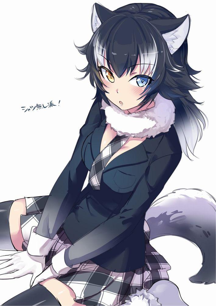 【けものフレンズ】タイリクオオカミ(Graywolf)のエロ画像【けもフレ】【19】