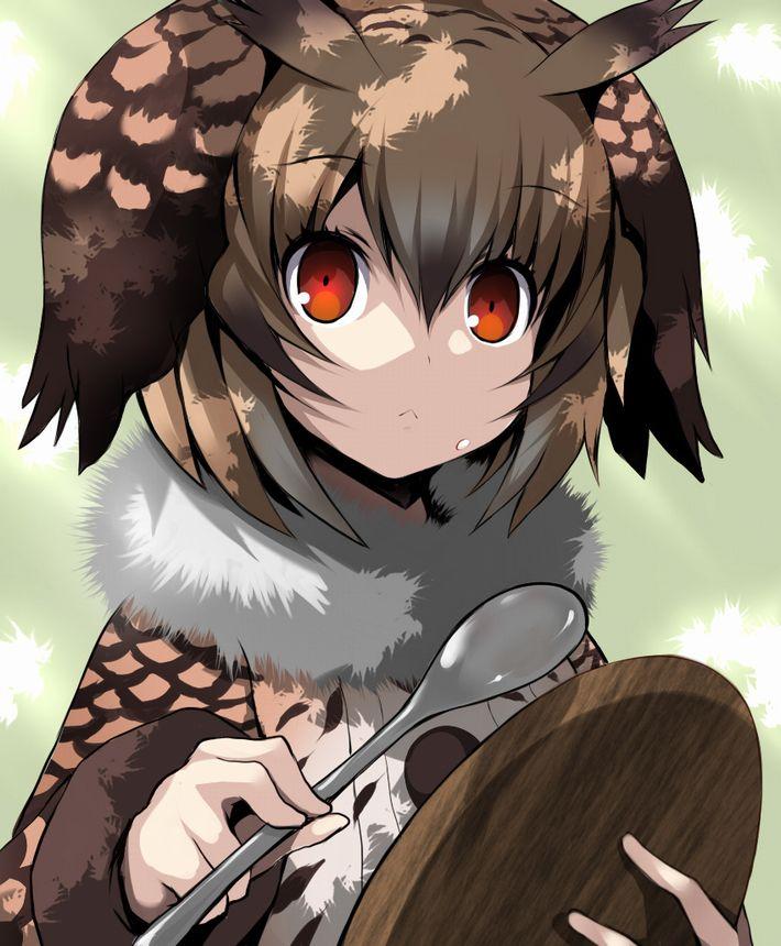 【けものフレンズ】ワシミミズク(eurasian eagle owl)のエロ画像【けもフレ】【12】