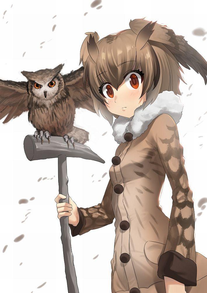 【けものフレンズ】ワシミミズク(eurasian eagle owl)のエロ画像【けもフレ】【14】