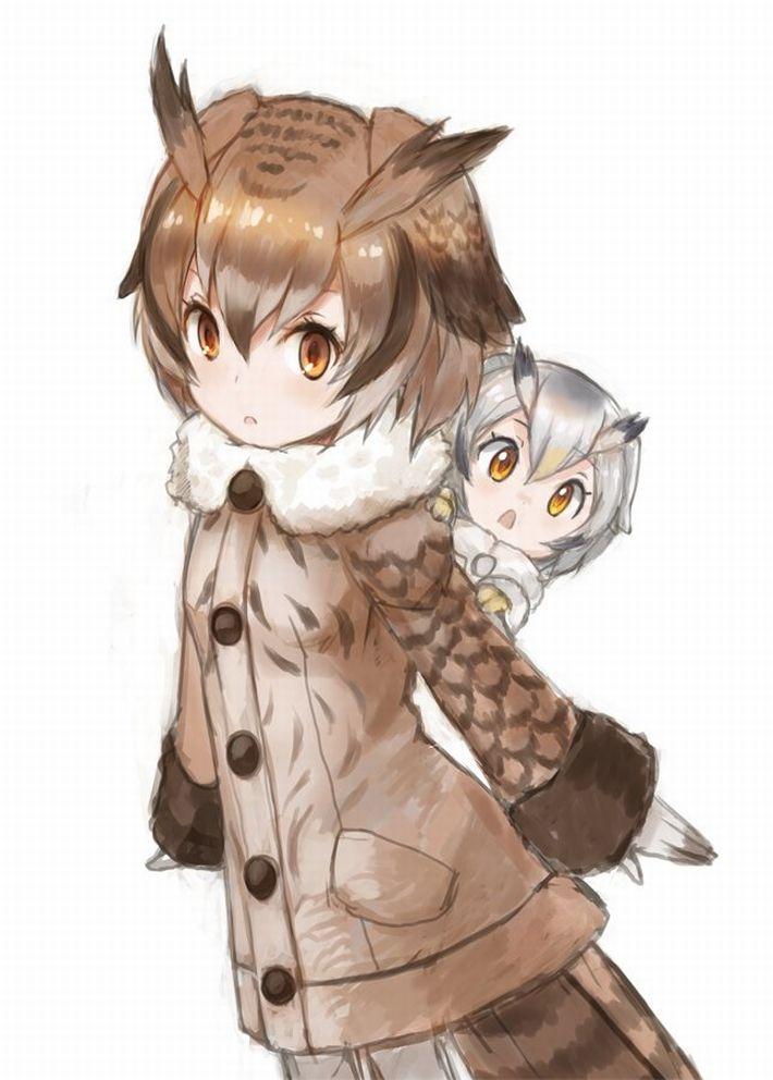 【けものフレンズ】ワシミミズク(eurasian eagle owl)のエロ画像【けもフレ】【28】