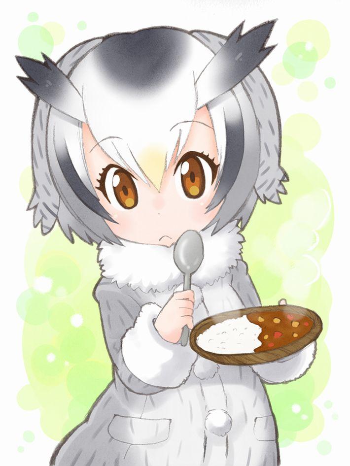 【けものフレンズ】アフリカオオコノハズク(northern white-faced owl)のエロ画像【けもフレ】【12】