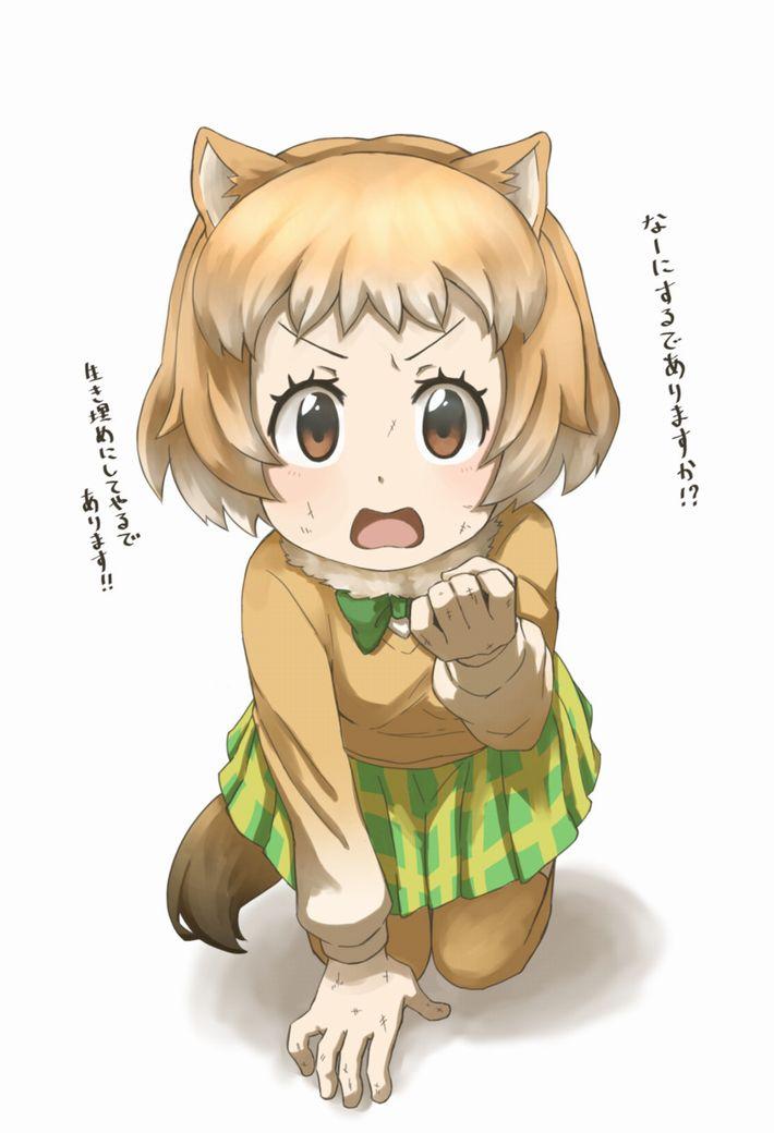 【けものフレンズ】オグロプレーリードッグ(black-tailed prairie dog)のエロ画像【けもフレ】【29】