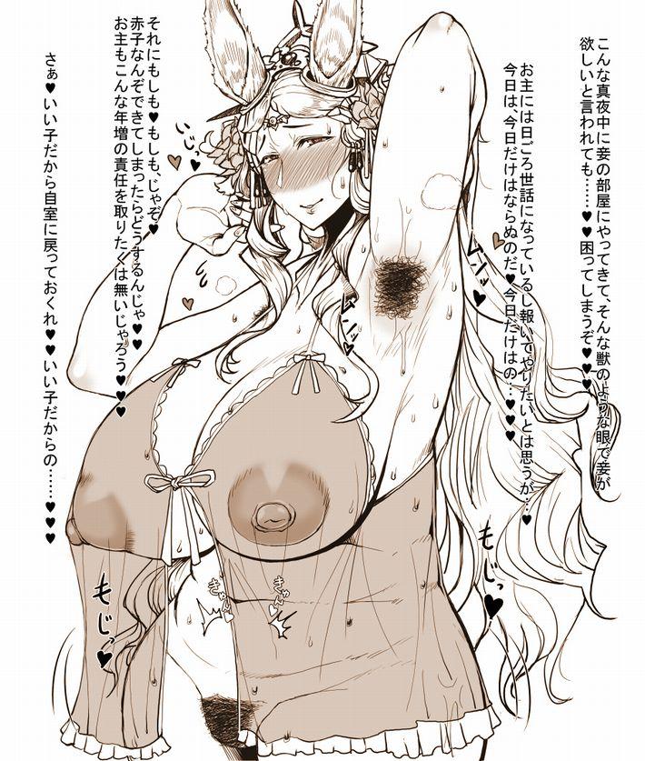 【女は捨てた】腋毛の処理すらしてない熟女・オバさんの二次エロ画像【19】