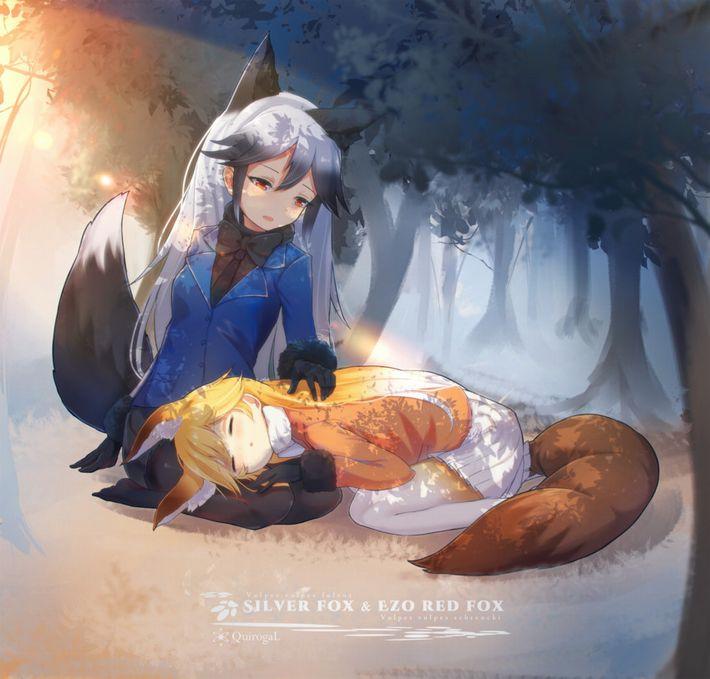 【けものフレンズ】キタキツネ(ezo red fox)のエロ画像【けもフレ】【41】