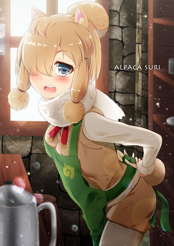 【けものフレンズ】アルパカ・スリ(alpaca suri)のエロ画像【けもフレ】【19】