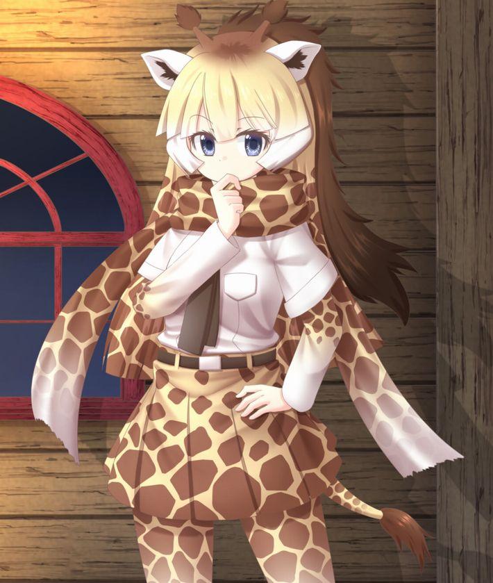 【けものフレンズ】アミメキリン(reticulated giraffe)のエロ画像【けもフレ】【7】