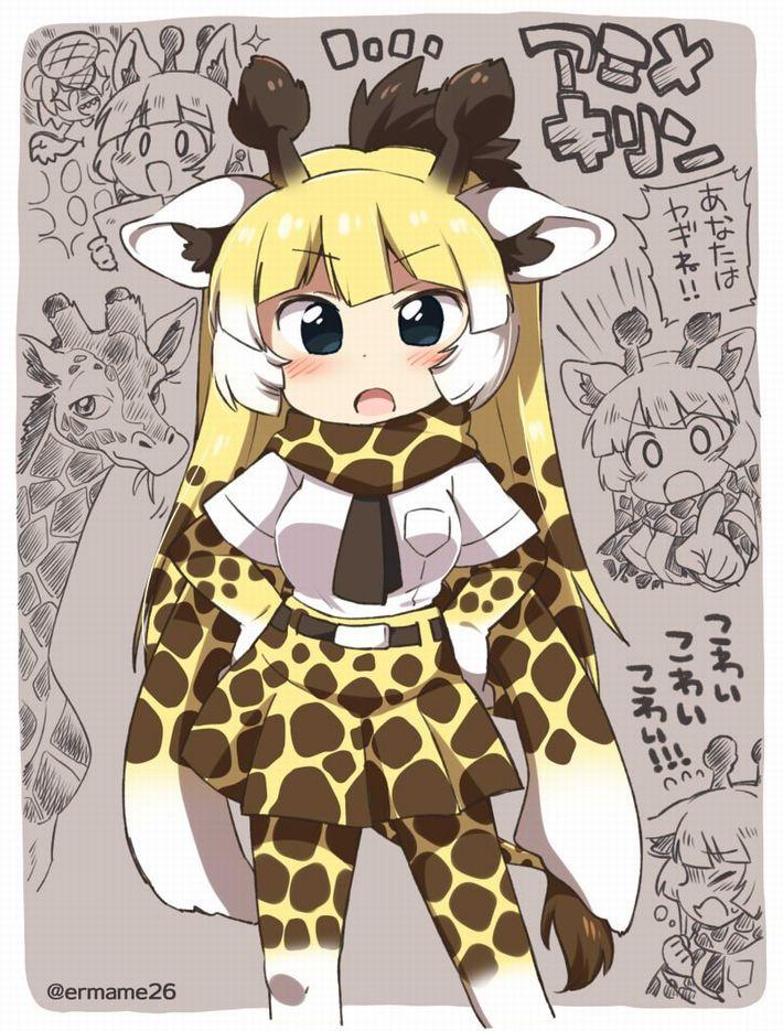 【けものフレンズ】アミメキリン(reticulated giraffe)のエロ画像【けもフレ】【26】