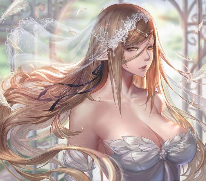 【夜はきっと・・・】純白のウェディングドレスを着た新婚ホヤホヤな二次エロ画像【23】