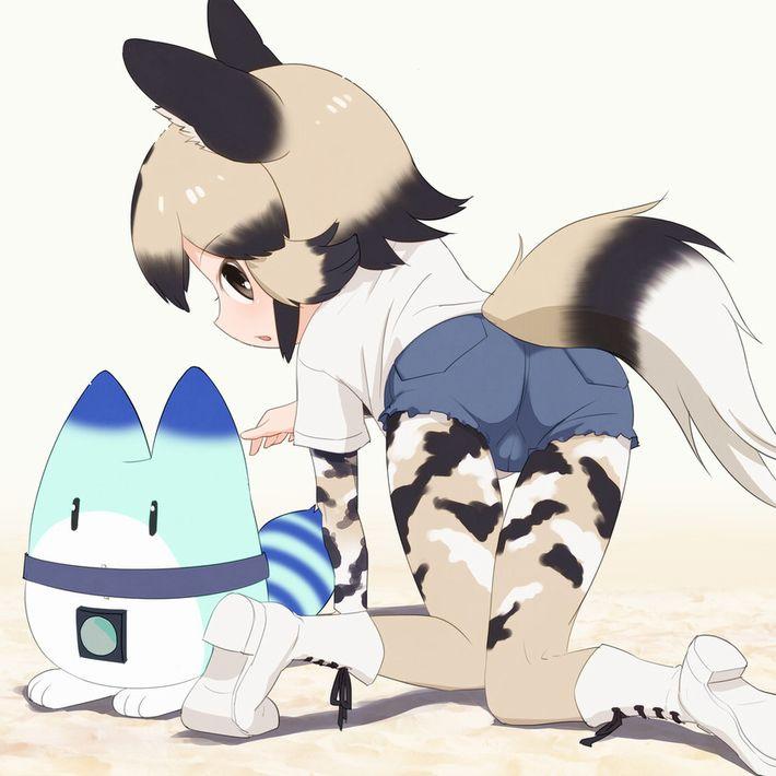 【けものフレンズ】リカオン(african wild dog)のエロ画像【けもフレ】【19】