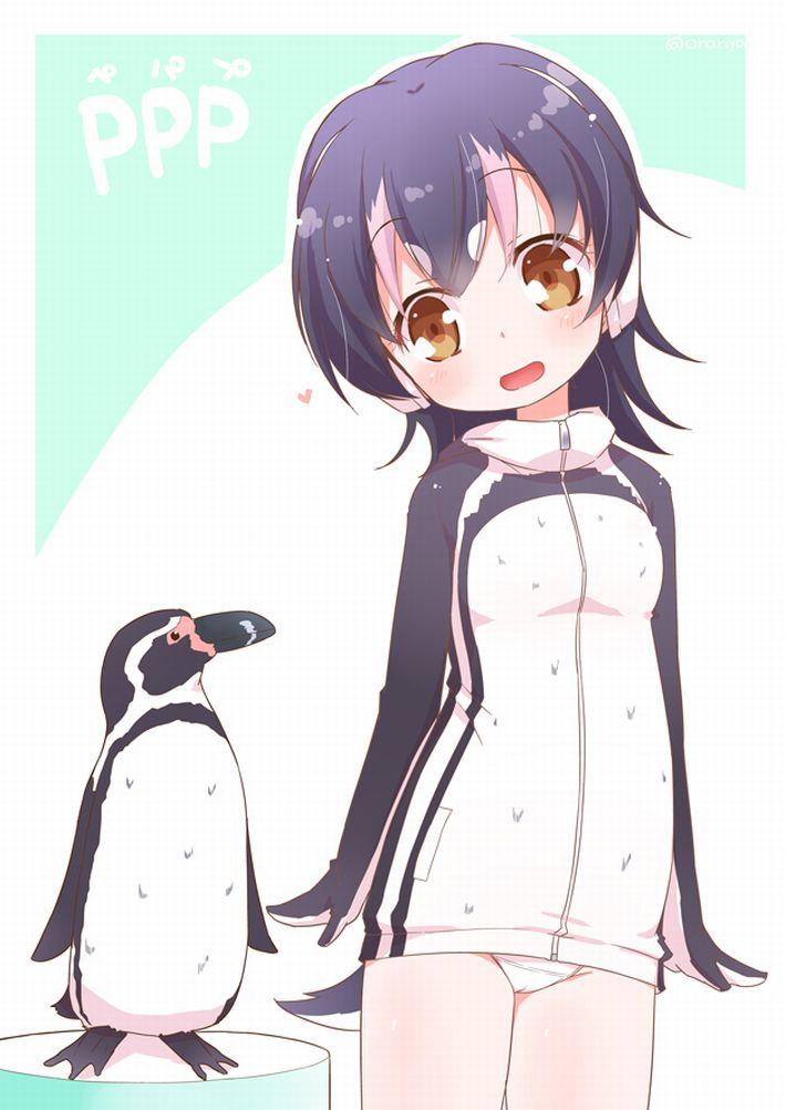 【けものフレンズ】フンボルトペンギン(humboldt penguin)のエロ画像【けもフレ】【42】