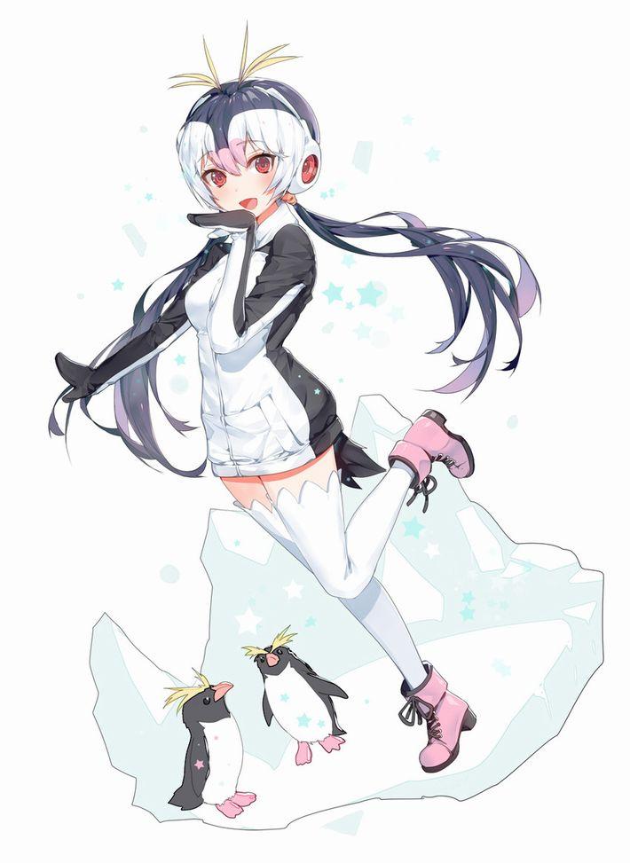 【けものフレンズ】ロイヤルペンギン(royal penguin)のエロ画像【けもフレ】【48】