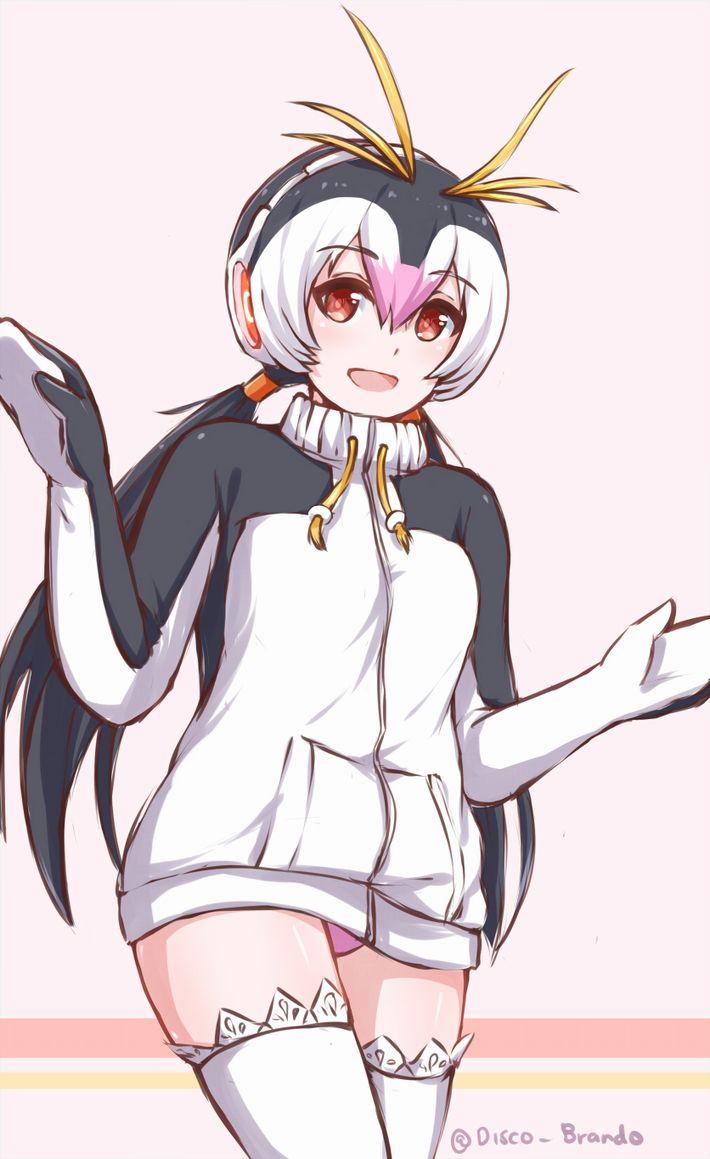 【けものフレンズ】ロイヤルペンギン(royal penguin)のエロ画像【けもフレ】【50】