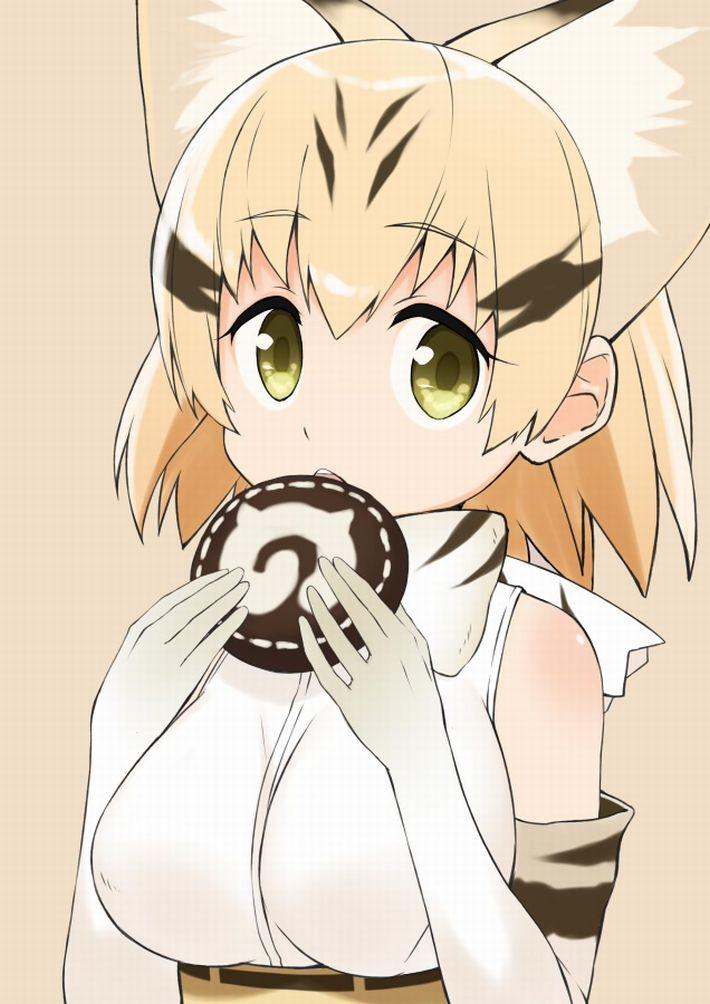 【けものフレンズ】スナネコ(sand cat)のエロ画像【けもフレ】【15】