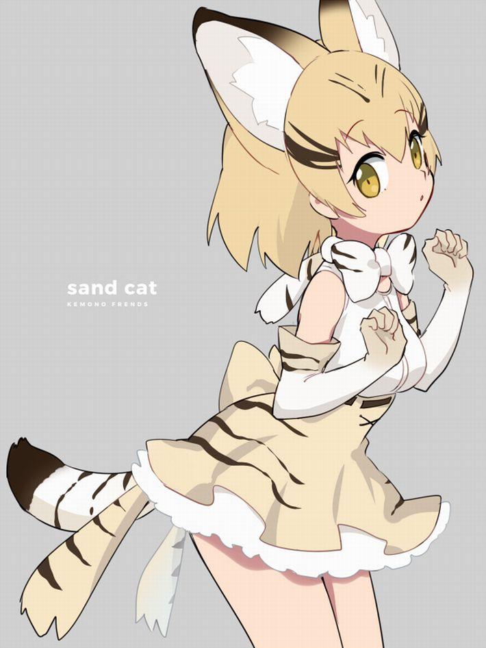 【けものフレンズ】スナネコ(sand cat)のエロ画像【けもフレ】【17】