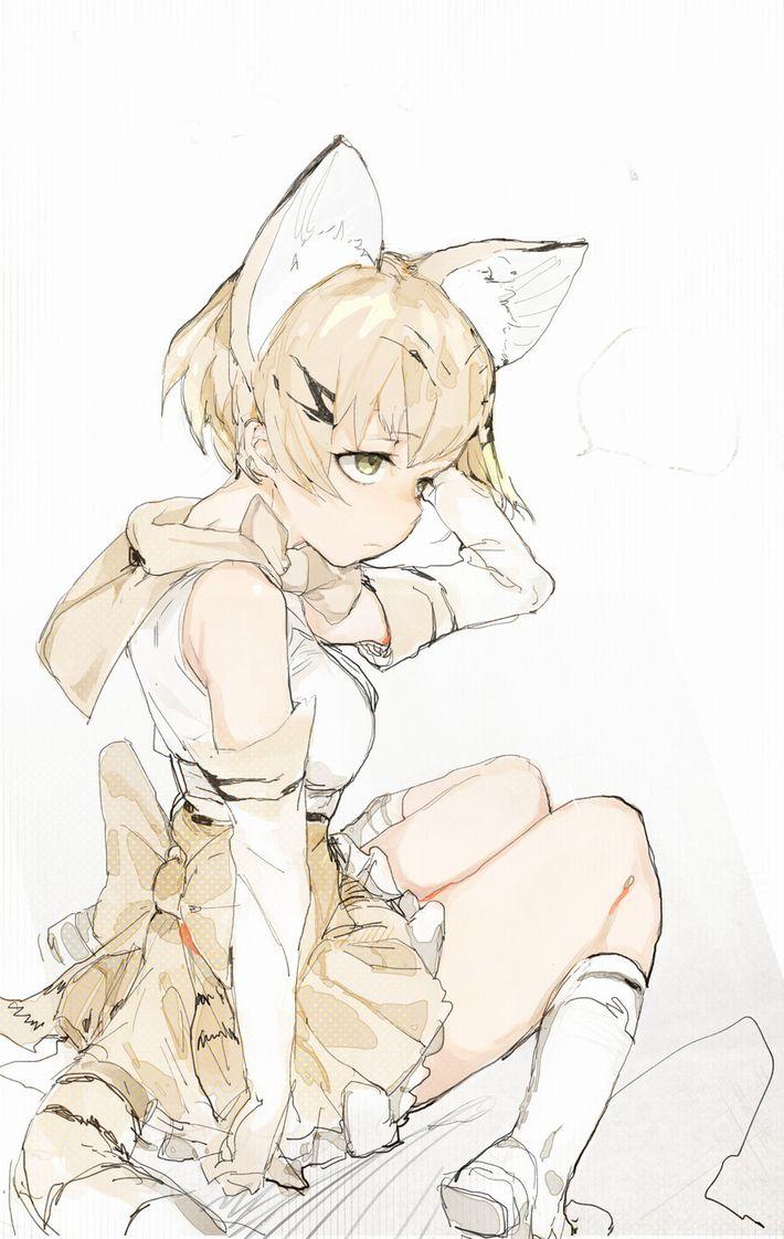 【けものフレンズ】スナネコ(sand cat)のエロ画像【けもフレ】【18】