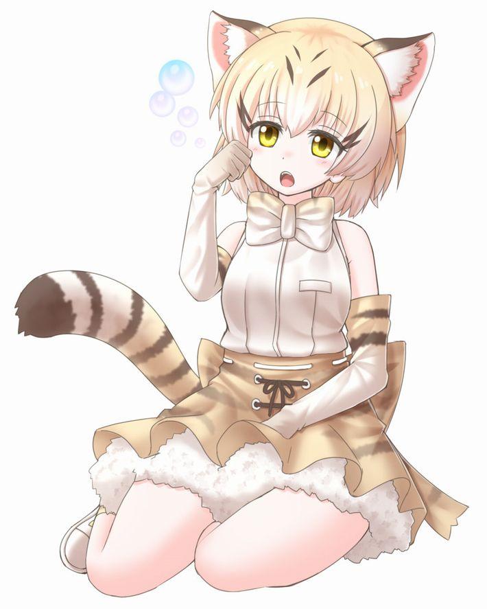 【けものフレンズ】スナネコ(sand cat)のエロ画像【けもフレ】【35】