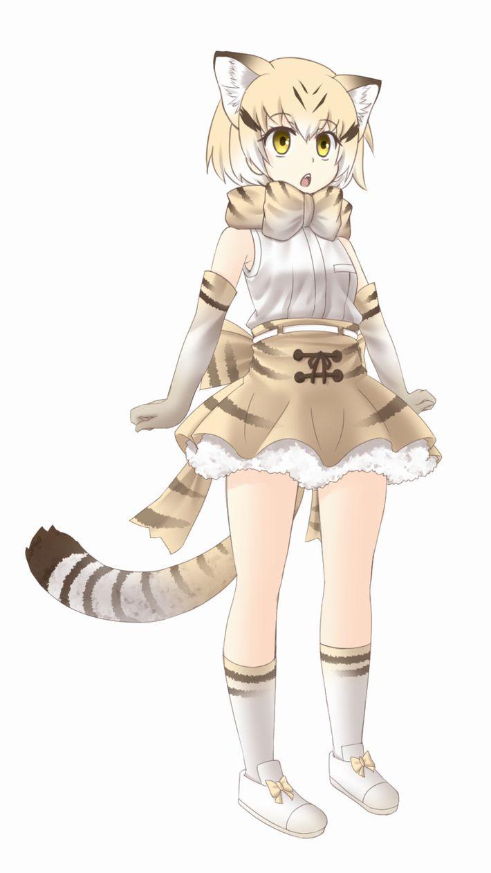 【けものフレンズ】スナネコ(sand cat)のエロ画像【けもフレ】【38】