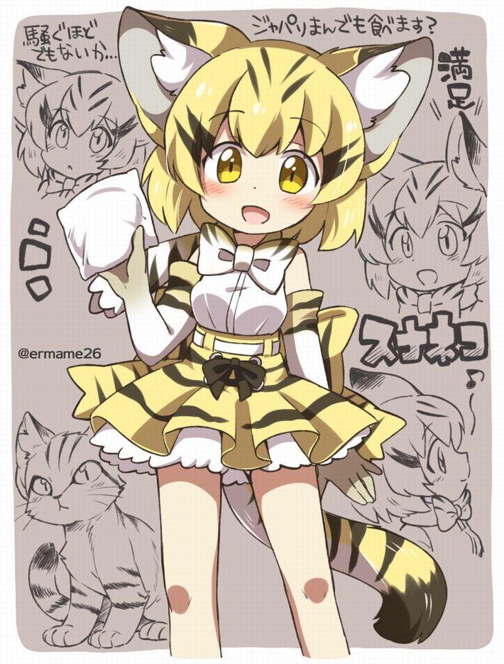 【けものフレンズ】スナネコ(sand cat)のエロ画像【けもフレ】【49】