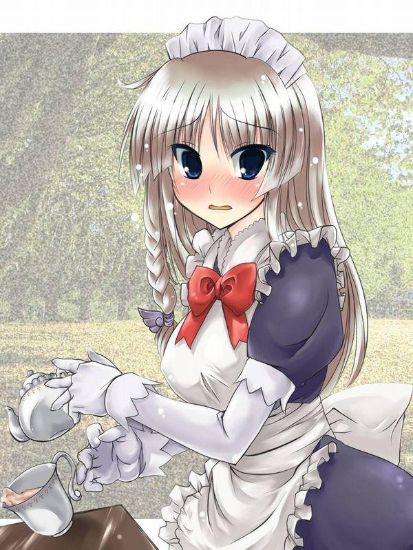 【萌えの王道】ドジっ娘メイドの二次画像【21】